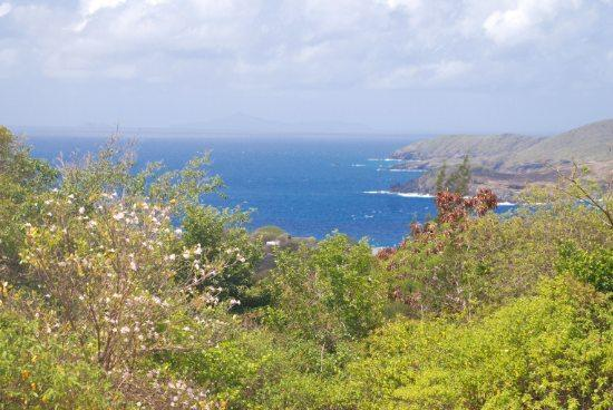 Lucia Real Estate on Property Sales Real Estate   Bequia  St Vincent   The Grenadines