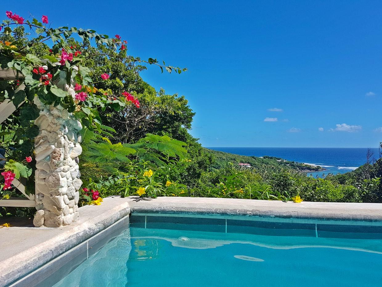 Fridays - Grenadines Accommodation - Rentals, Hotels & Apartments ...