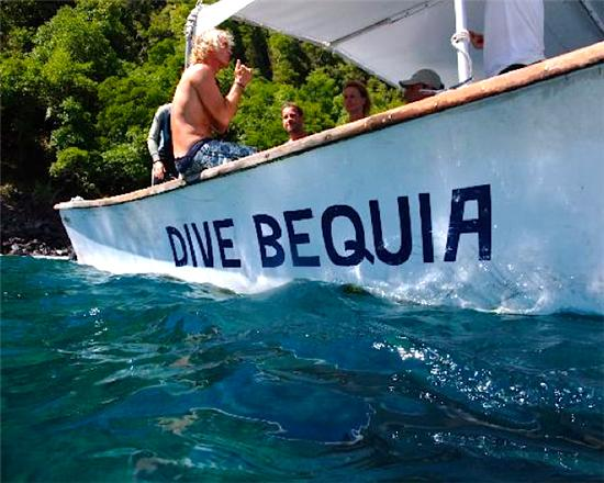 Bequia Rental Villas, Hotels & Apartments - - Discover Scuba Diving Training Course - Bequia - - All Locations