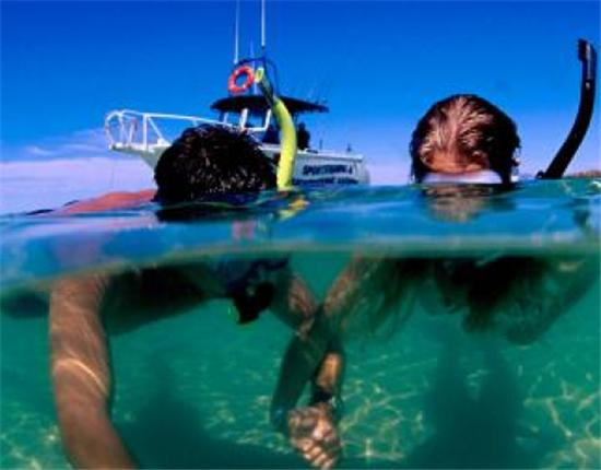 Bequia Rental Villas, Hotels & Apartments - - SCUBA Dive in Bequia 1 Tank Dive - - All Locations